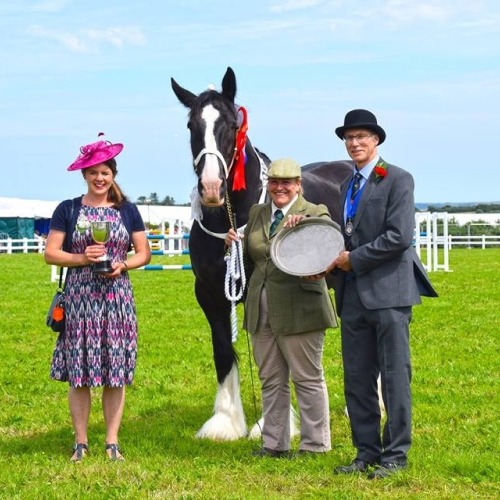 Winning horse & Owner being awarded prize