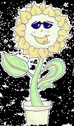 sunflower gif